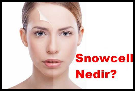 Snowcell Nedir