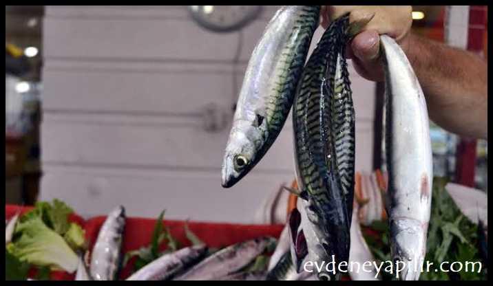 Somon, Uskumru - Tansiyon Düşüren Yiyecekler